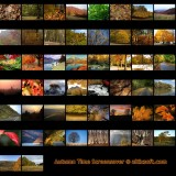 The Autumn Time Screensaver